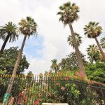 jardin-alsace-lorraine-3